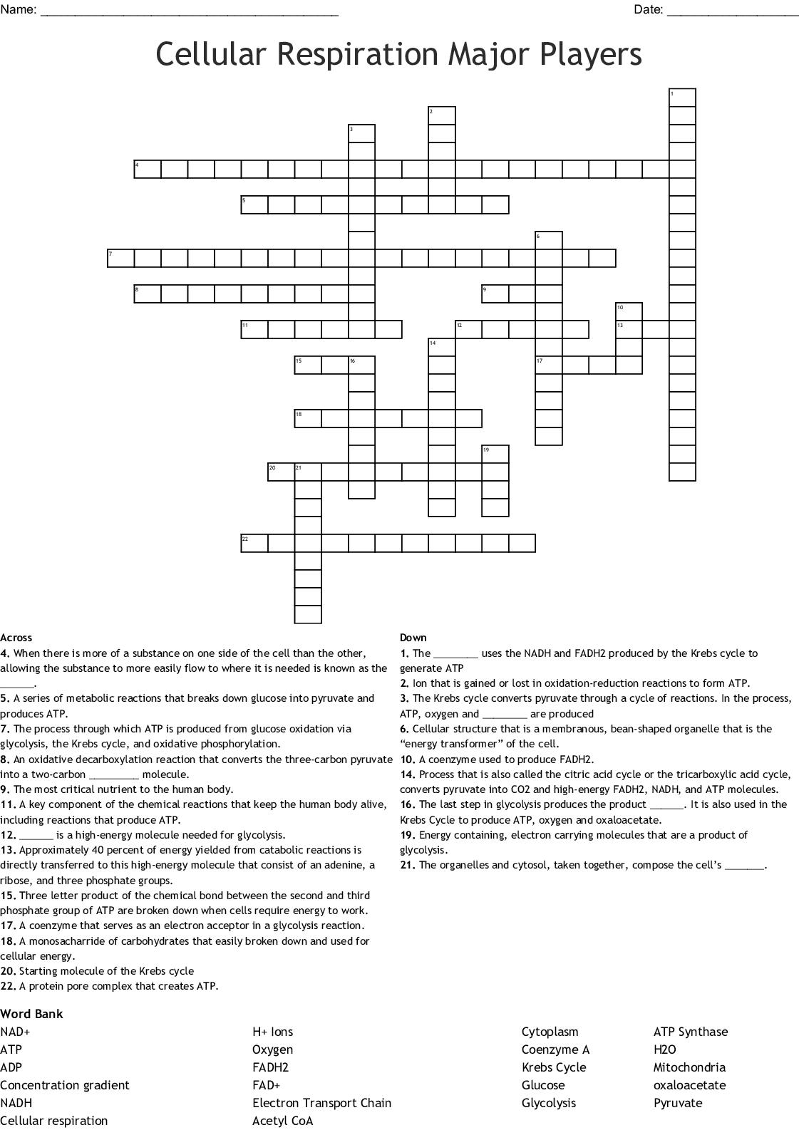 Cellular Respiration Major Players Crossword