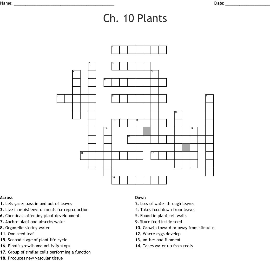 Ch 10 Plants Crossword