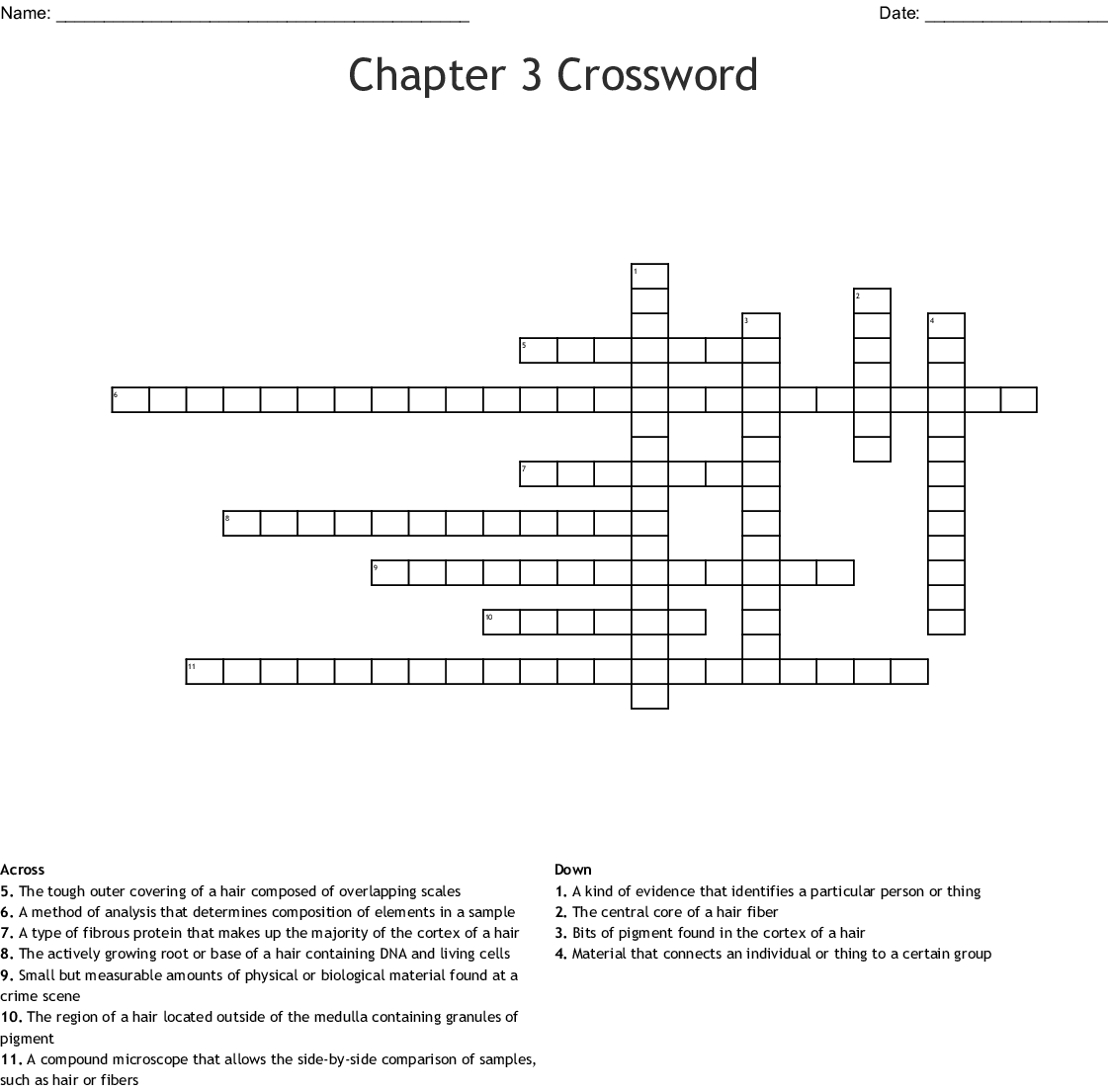 Crime Scene Basics Worksheet 2 Answers