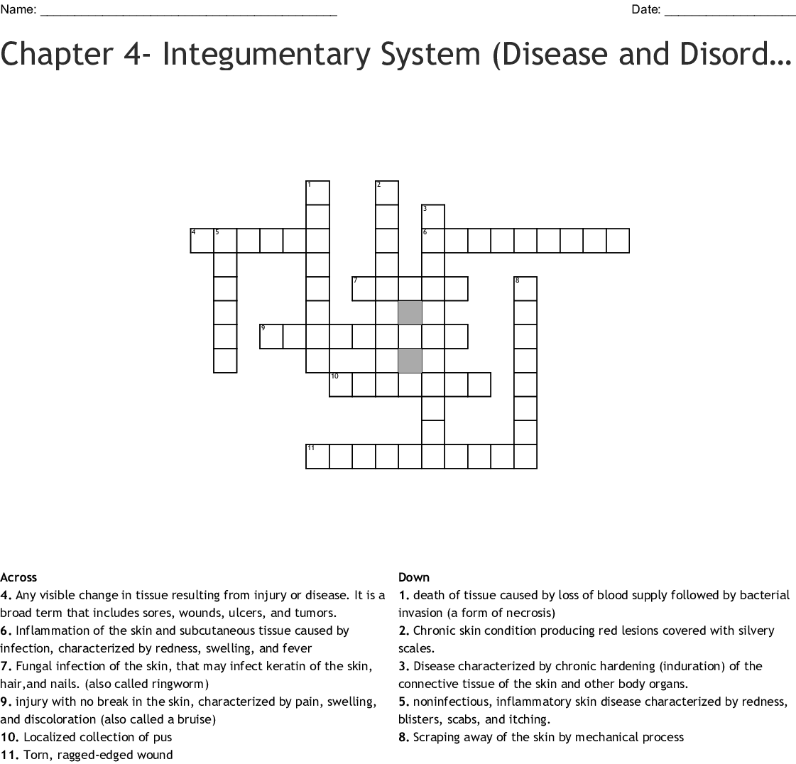 Chapter 5 Integumentary System Worksheet