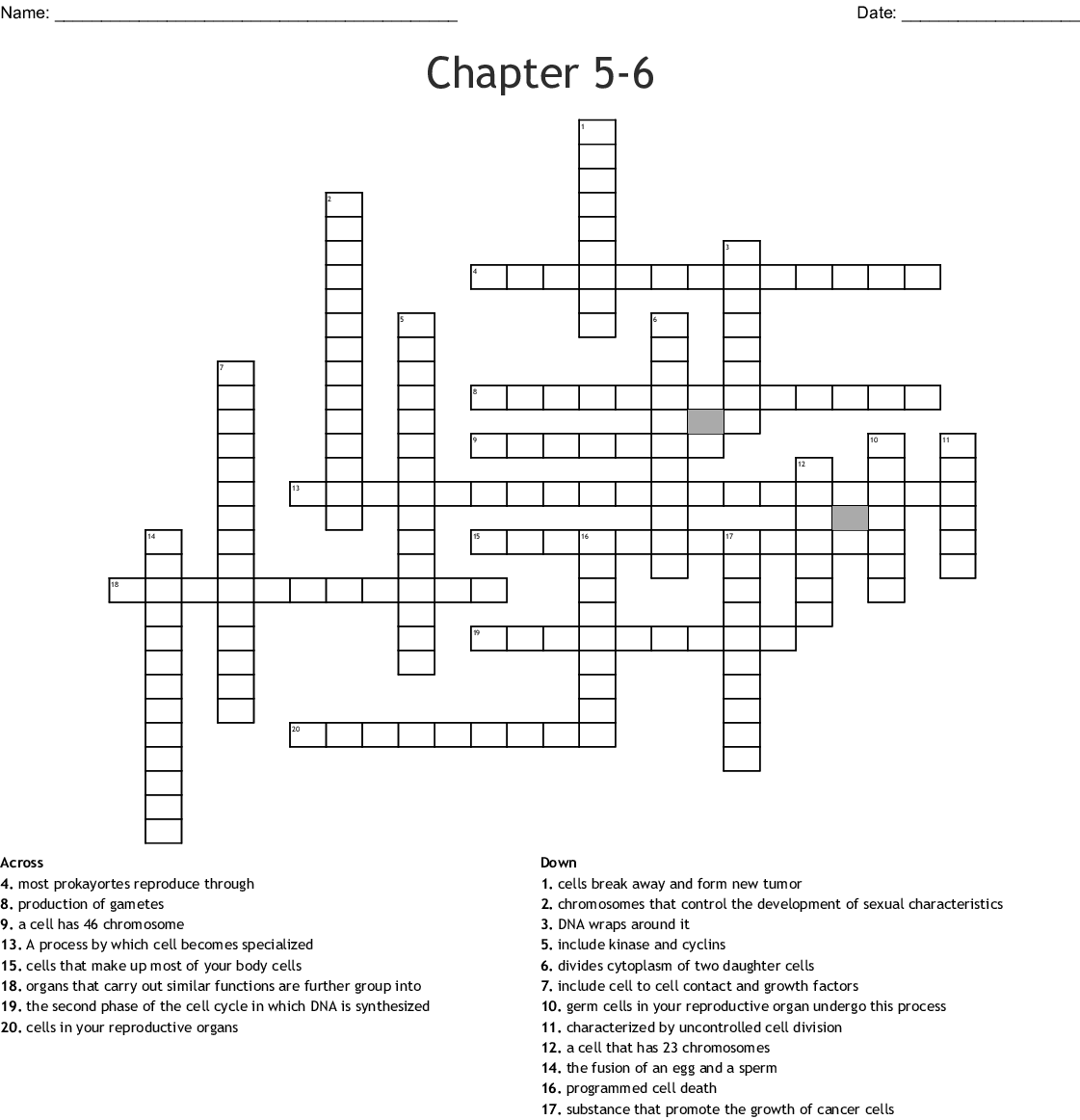 Chapter 5 6 Crossword