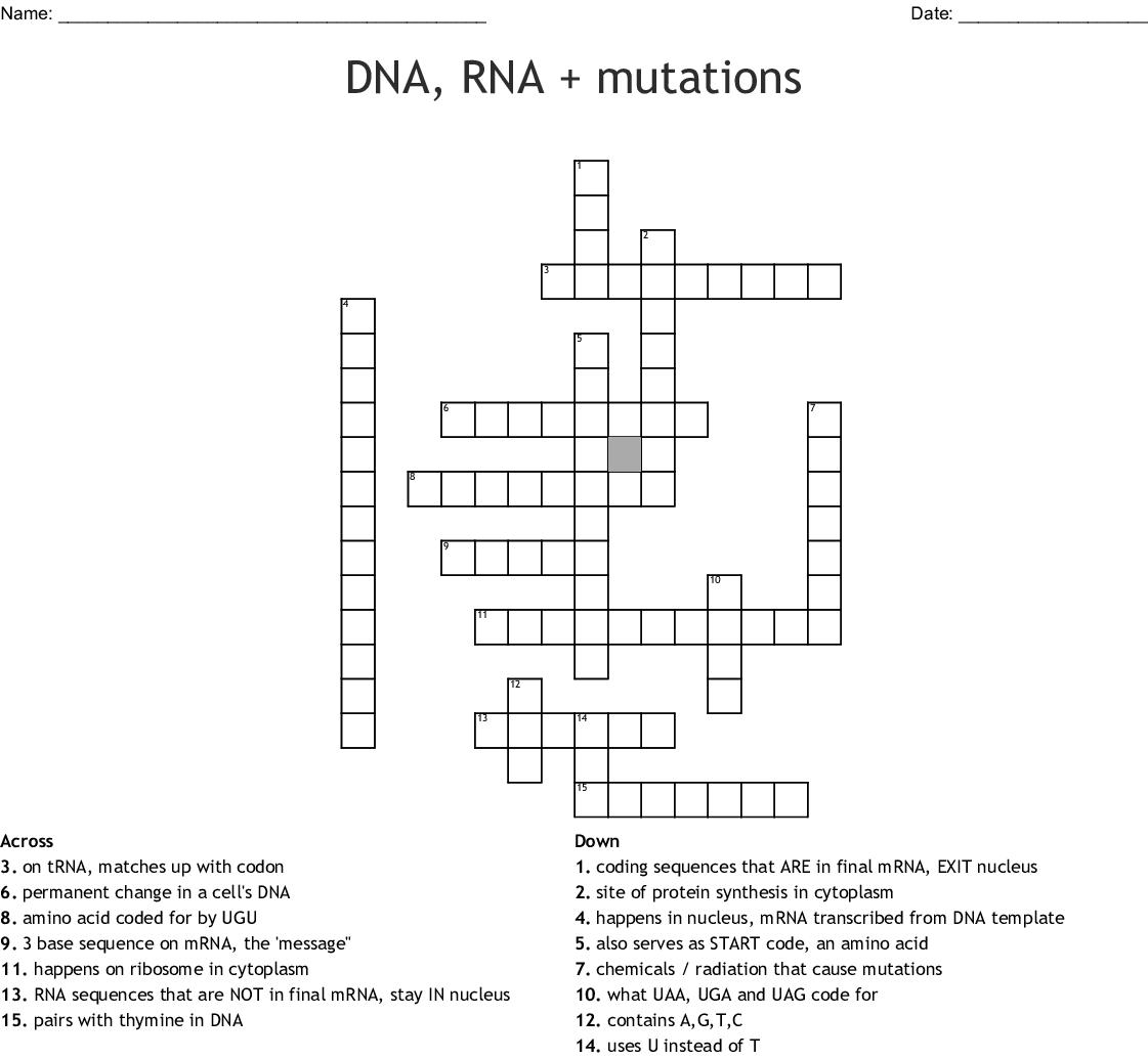 Dna Rna Mutations Crossword