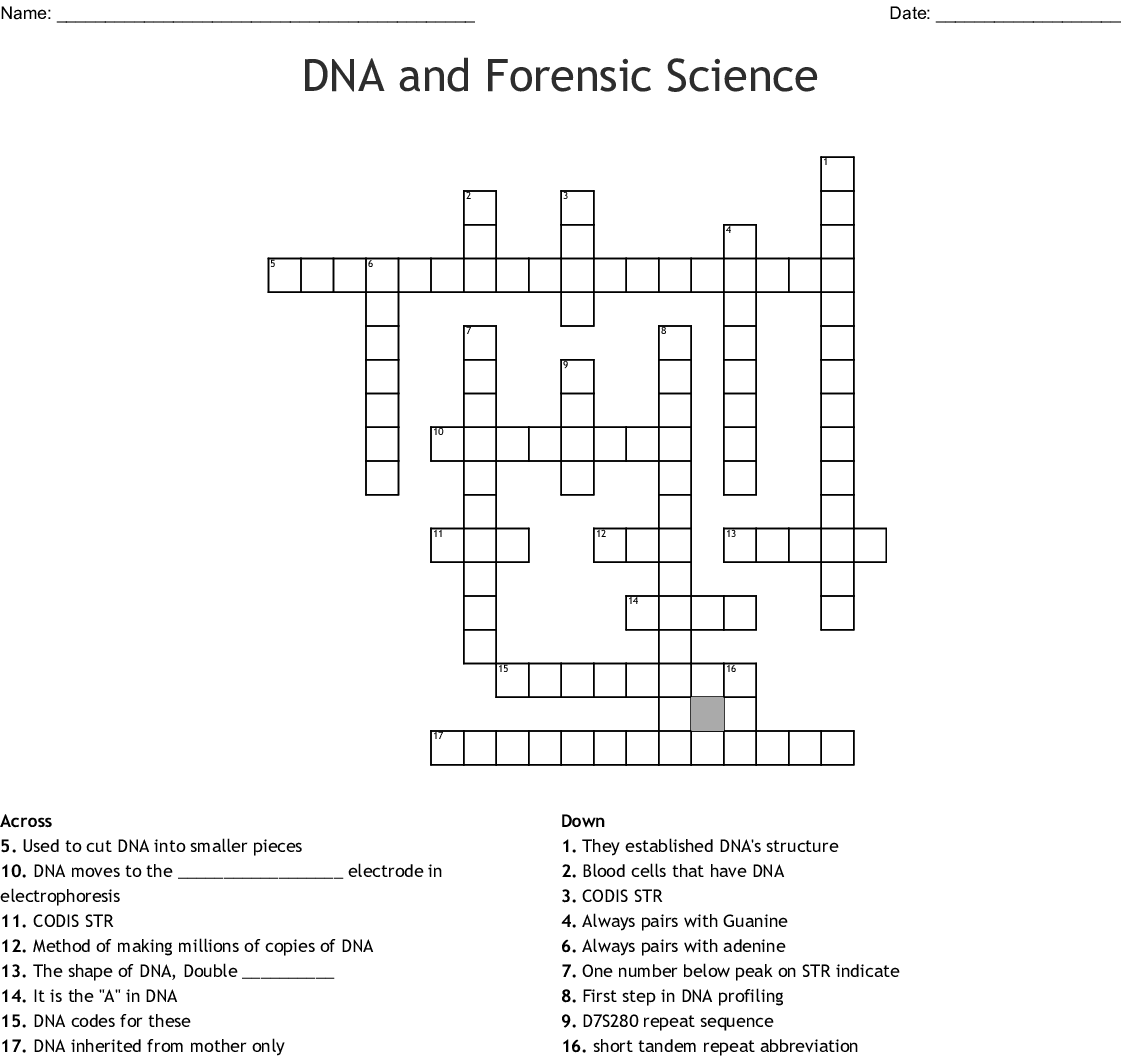 Forensic Science Crossword Puzzle Answers Wordmint
