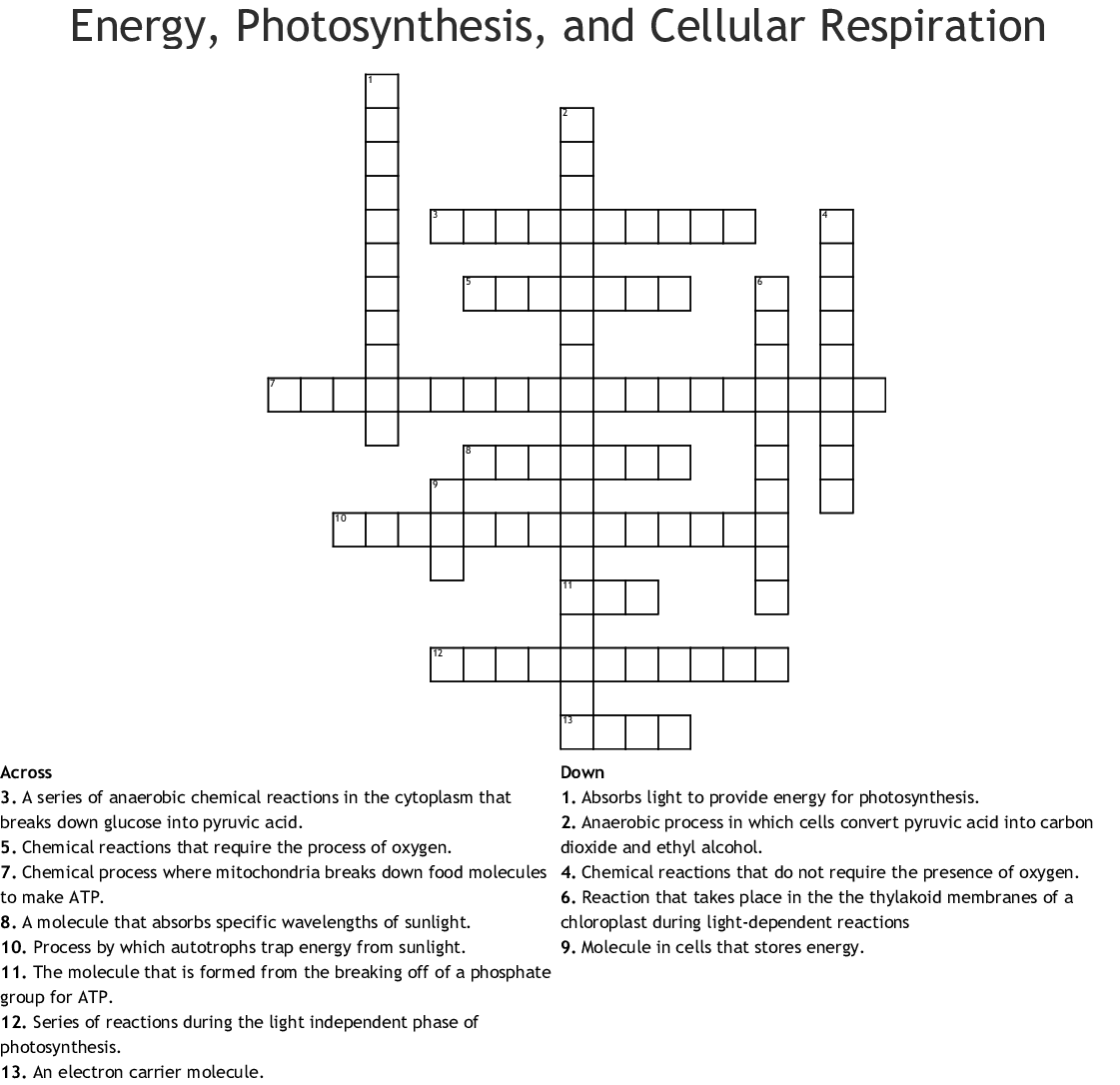 Photosynthesis And Cellular Respiration Crossword Puzzle