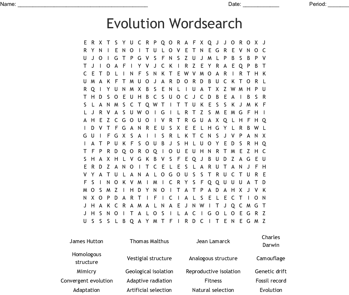 Evolution Wordsearch