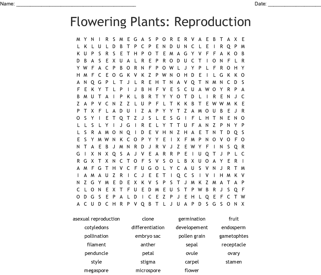 Flowering Plants Reproduction Word Search