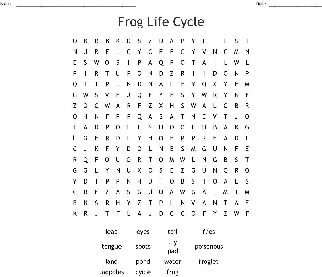 Frog Life Cycle Word Search