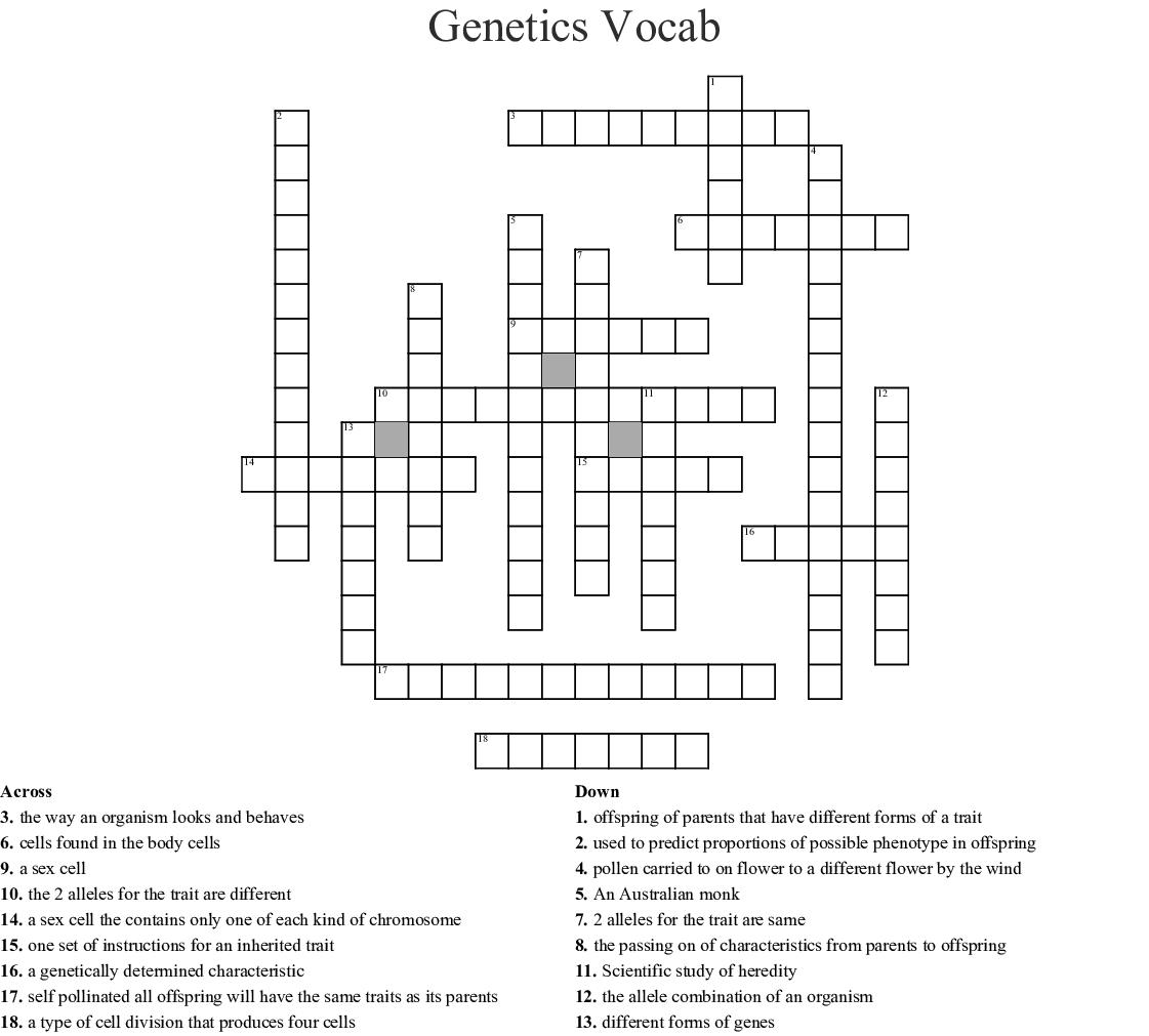 Genetics Vocabulary Crossword Answer Key