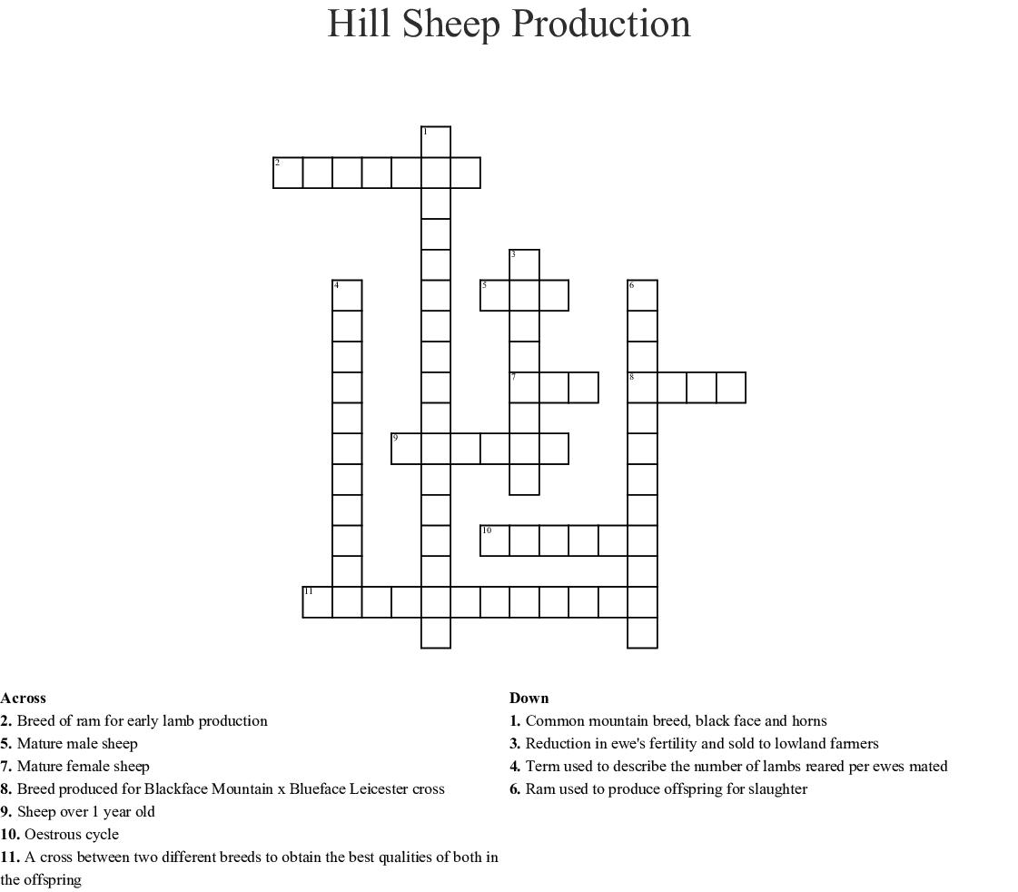 Sheep Crossword