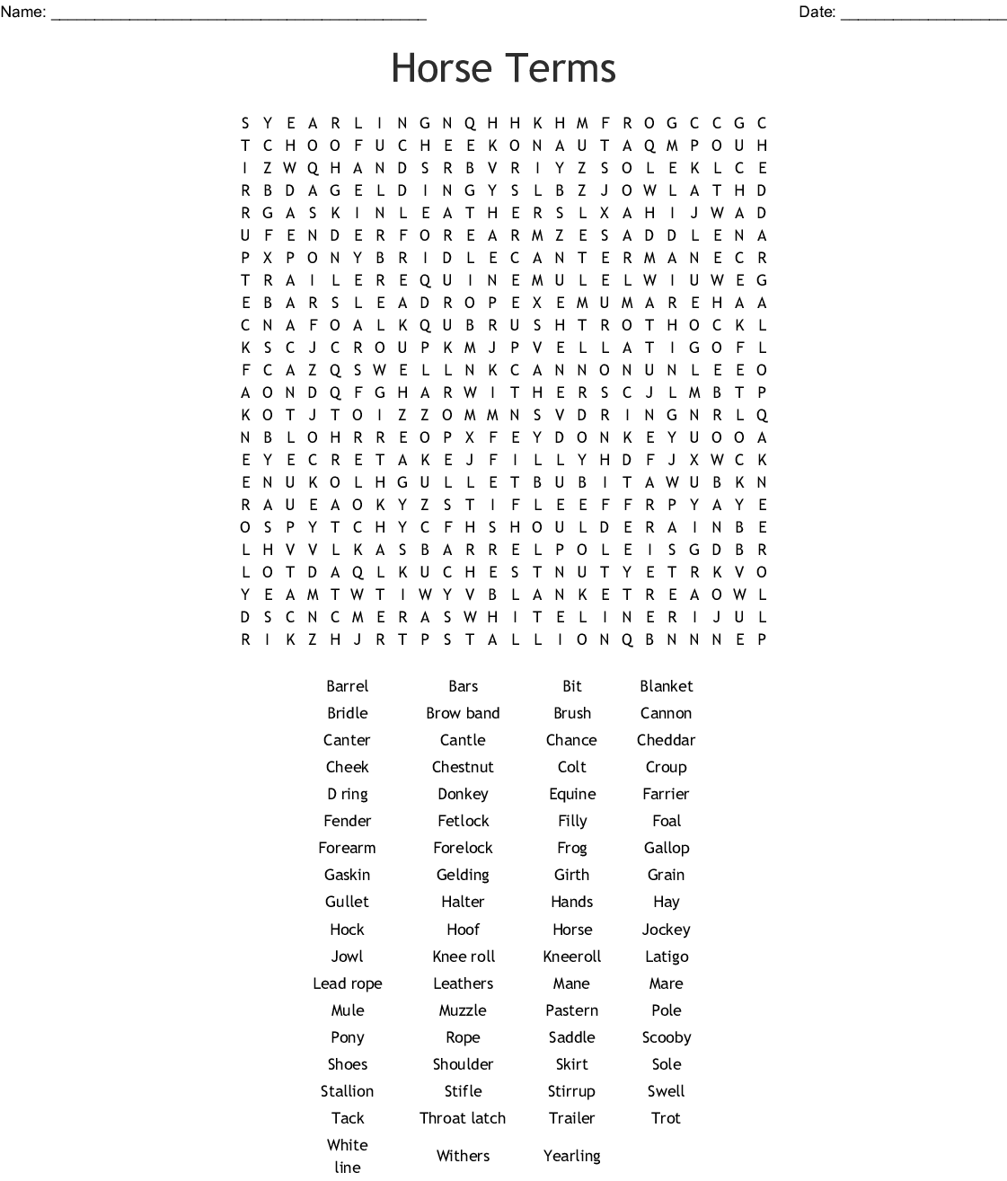 Rodeo Word Search