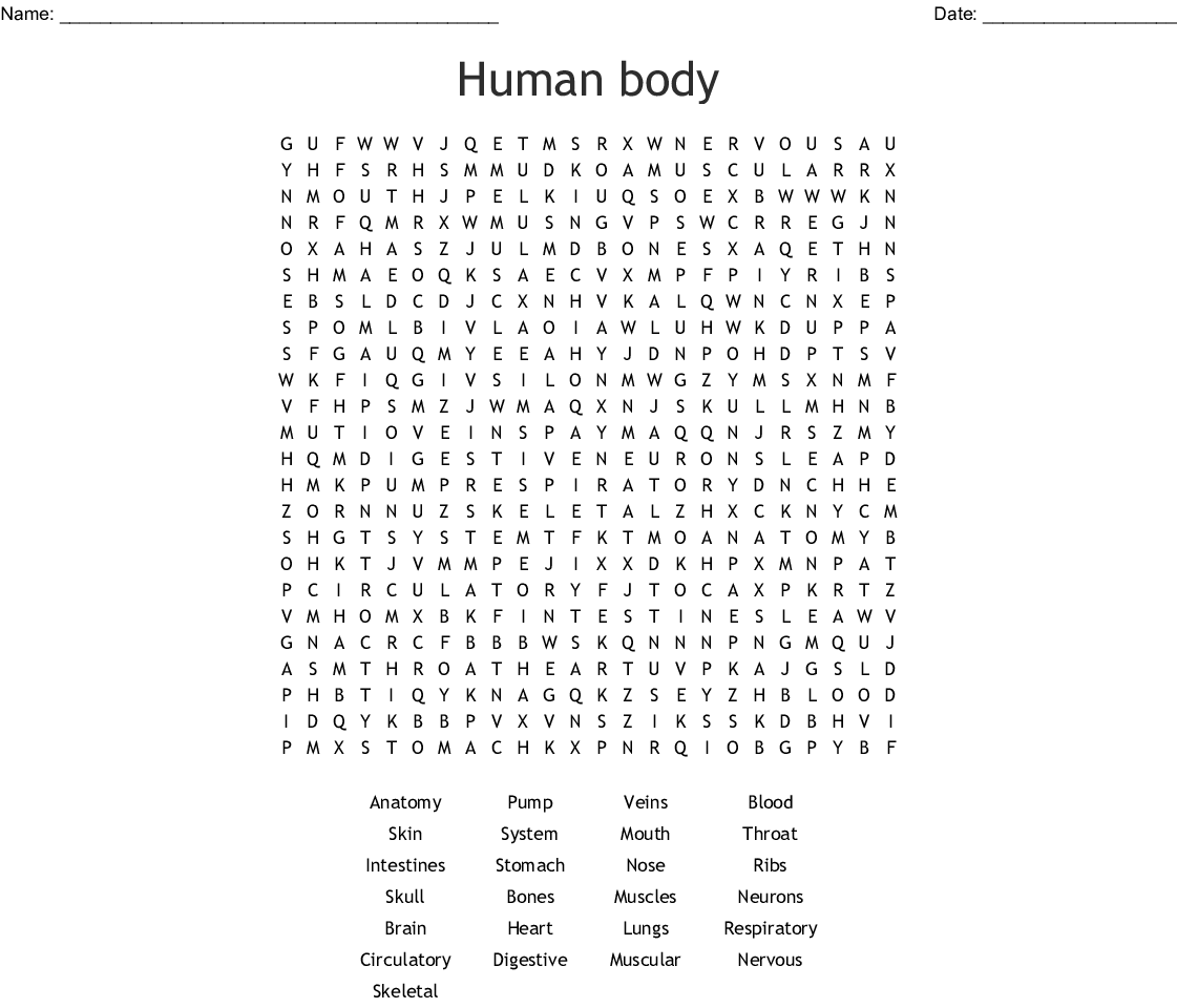 Human Body Word Search