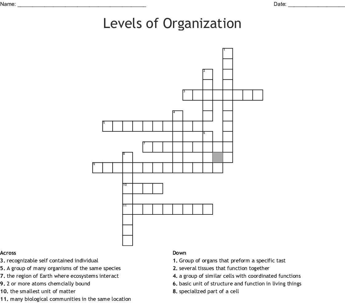 Levels Of Organization Crossword