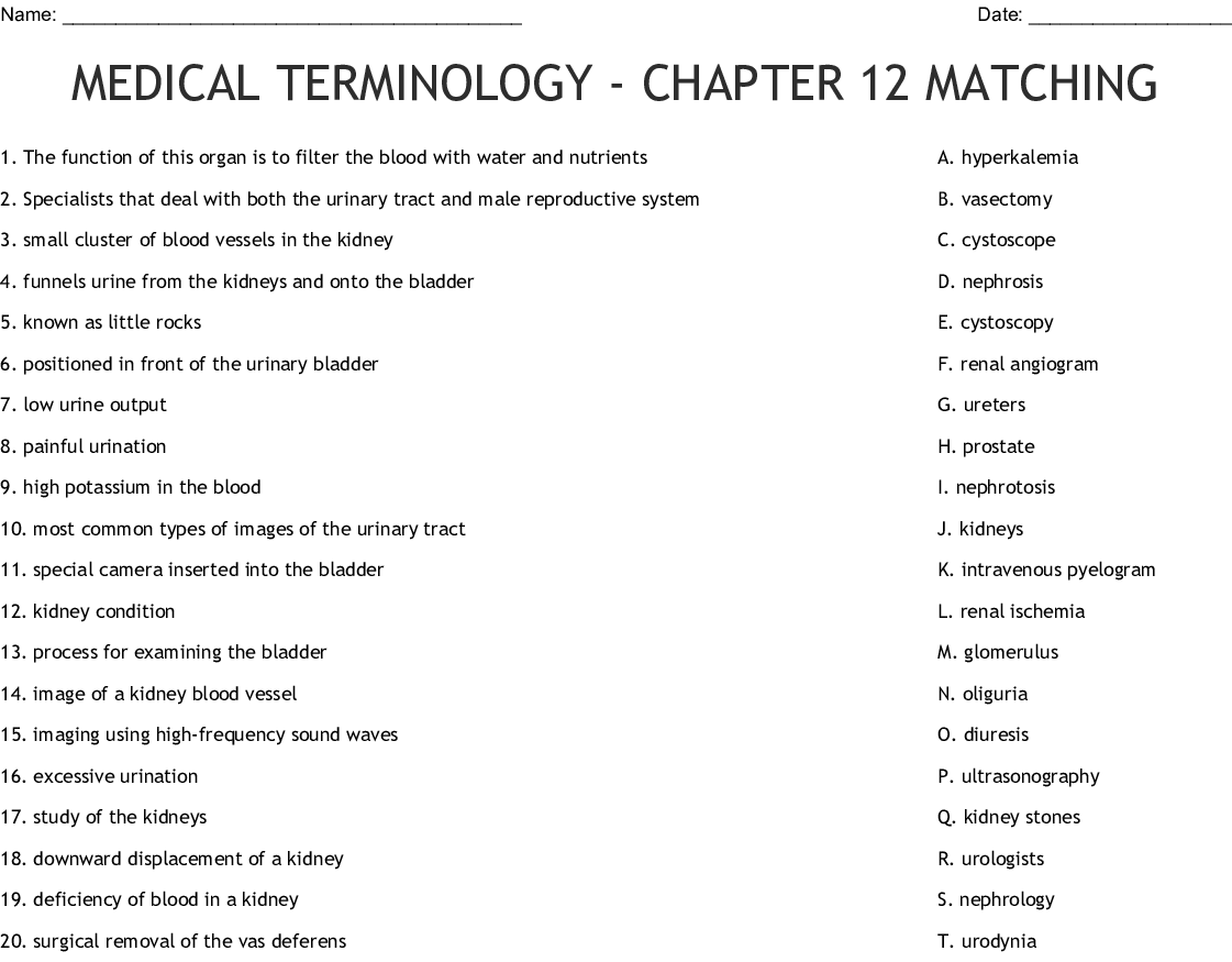 Medical Terminology Study Guide Word Search