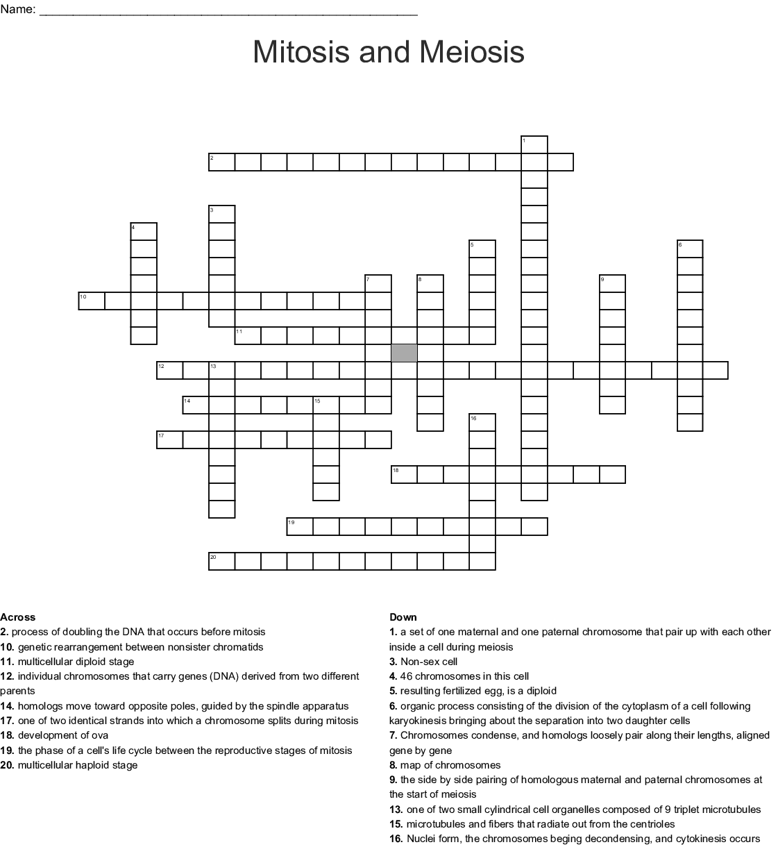Mitosis And Meiosis Crossword