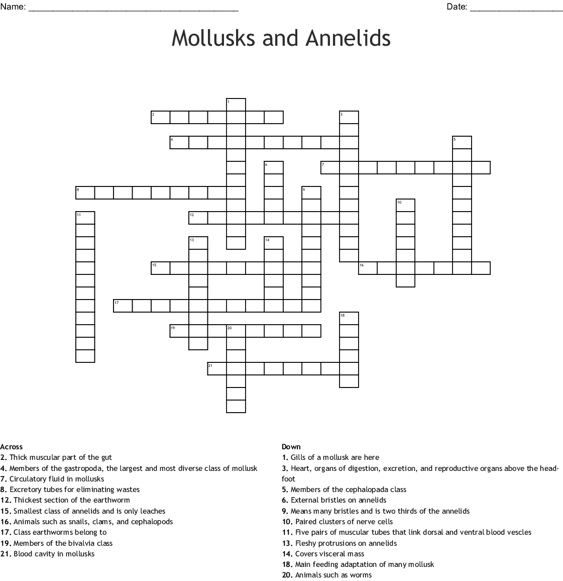 Mollusks Worksheet 1 Answer Key