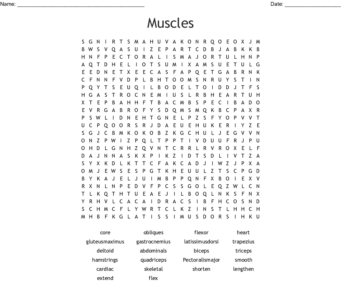 Muscles Word Search