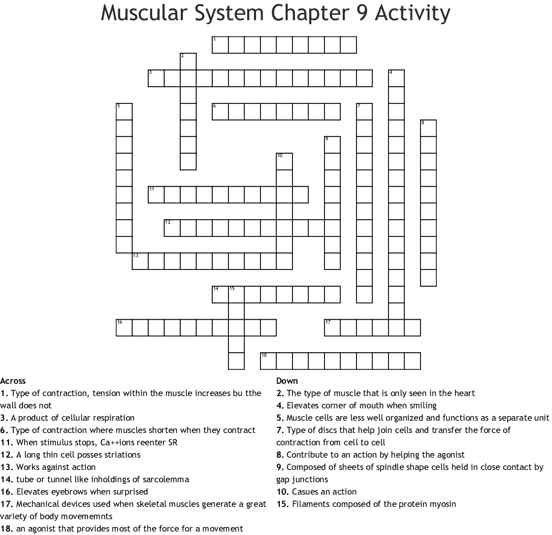 Muscles Amp Muscle Tissue Crossword