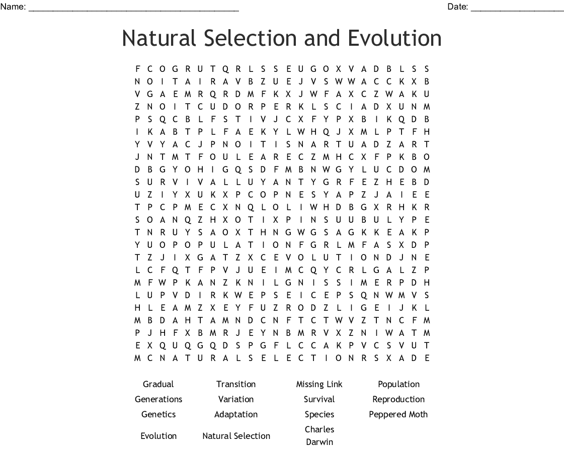 Natural Selection And Evolution Word Search