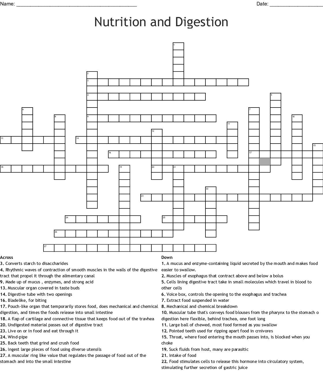 Nutrition And Digestion Crossword