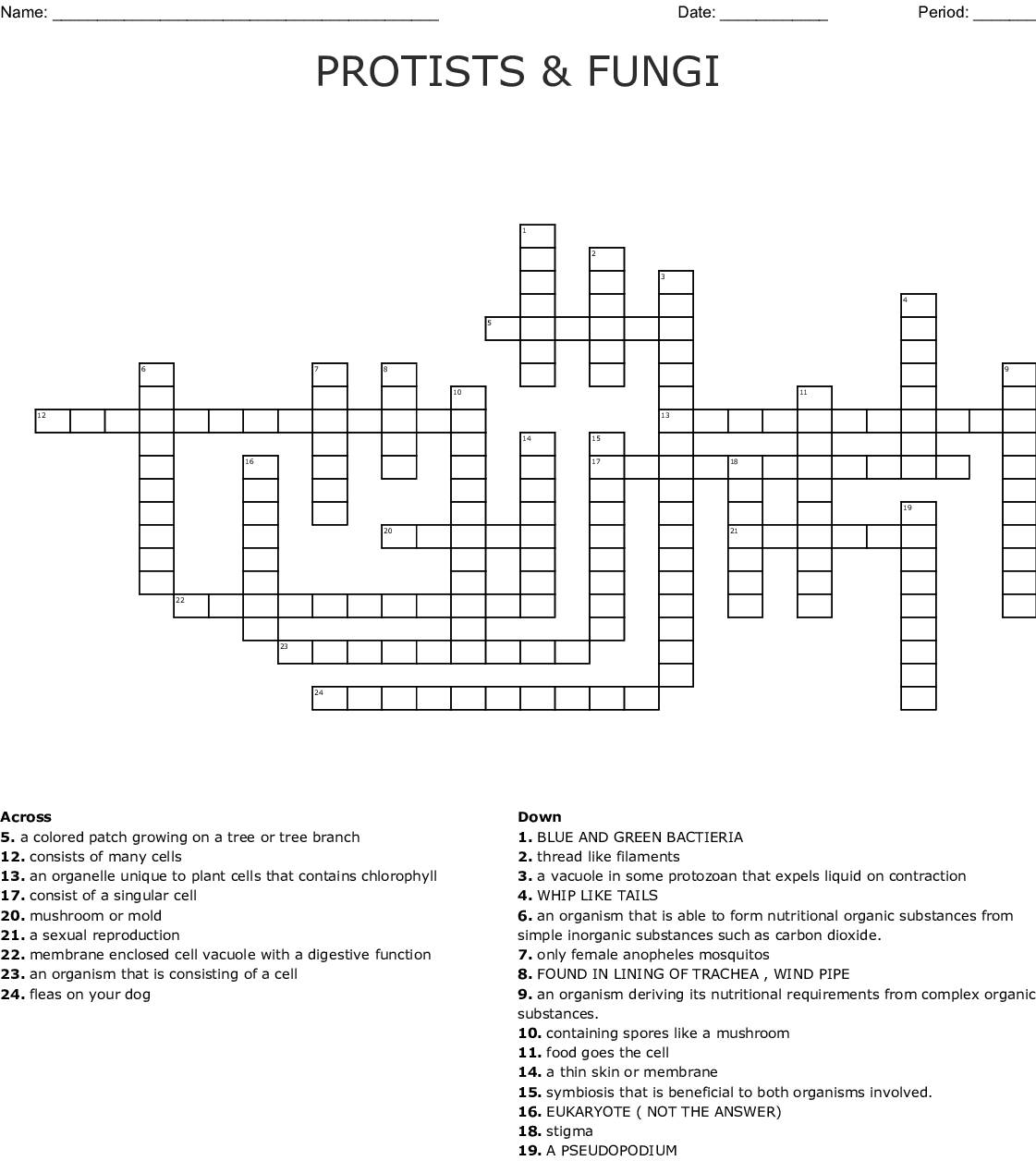 Protists And Fungi Crossword
