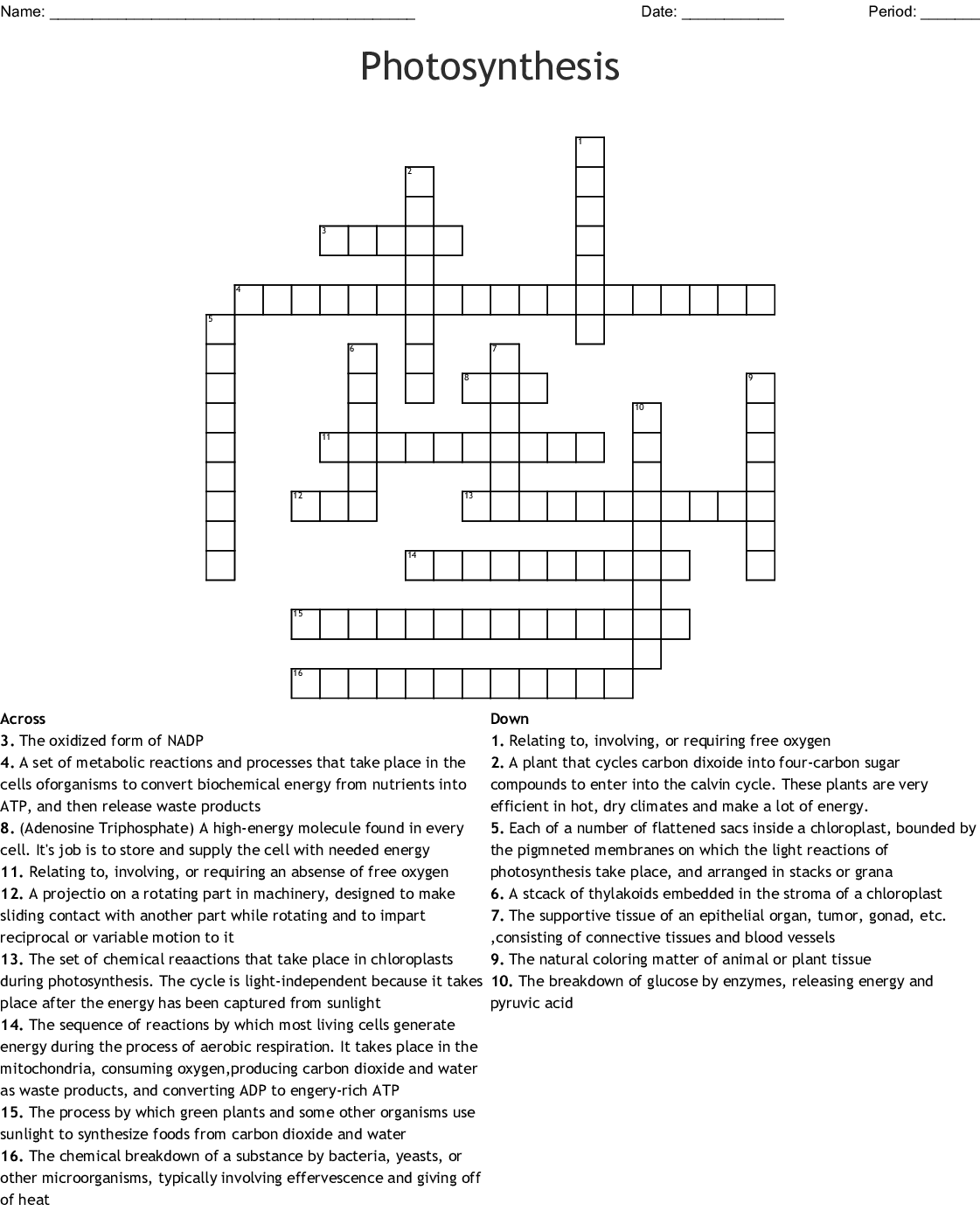 Ch 8 Photosynthesis Crossword