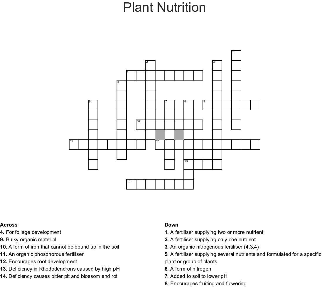 P Plant Worksheet