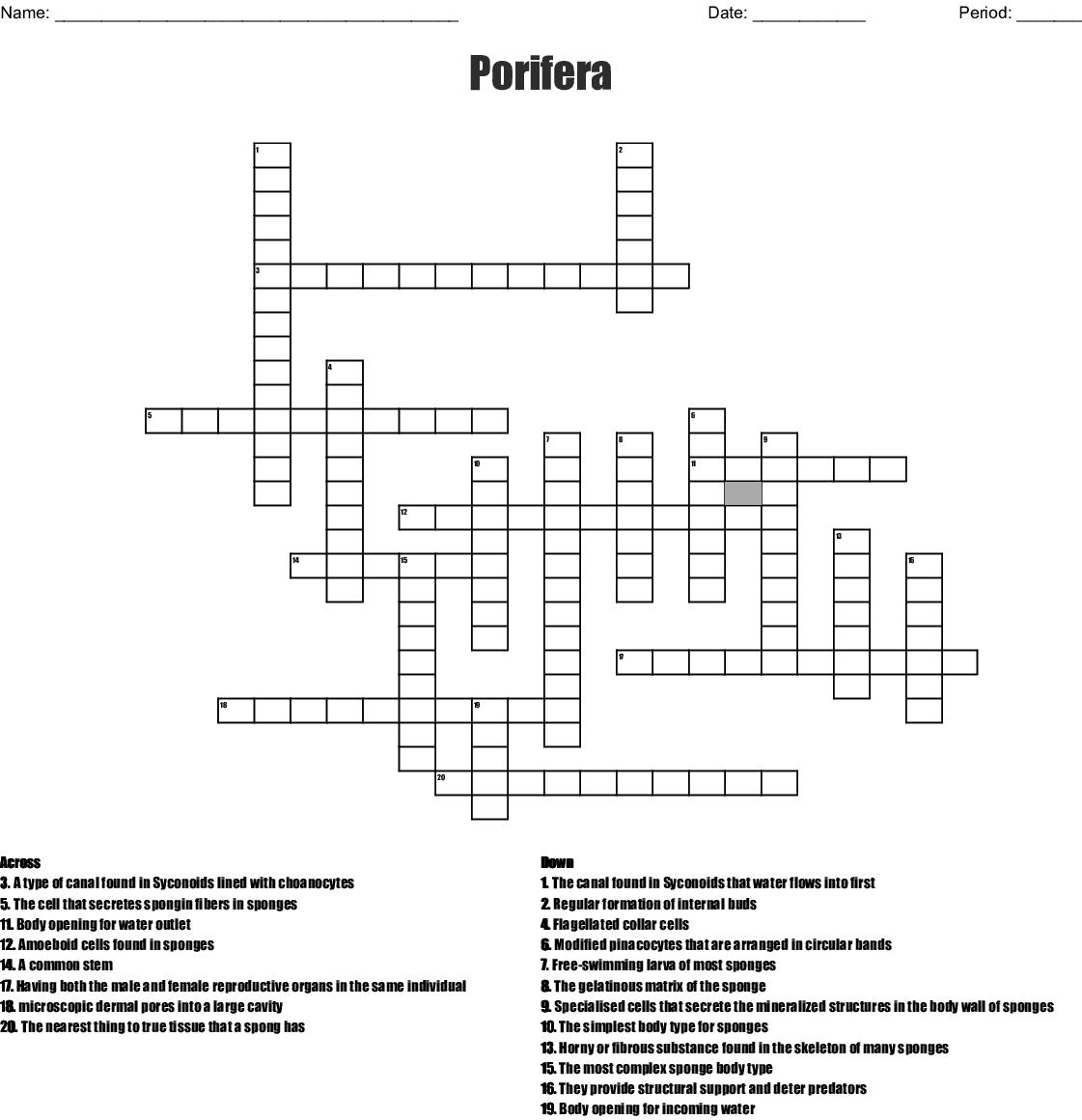 Porifera Crossword