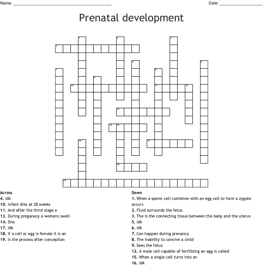 What Are The 3 Stages Of Prenatal Development Called