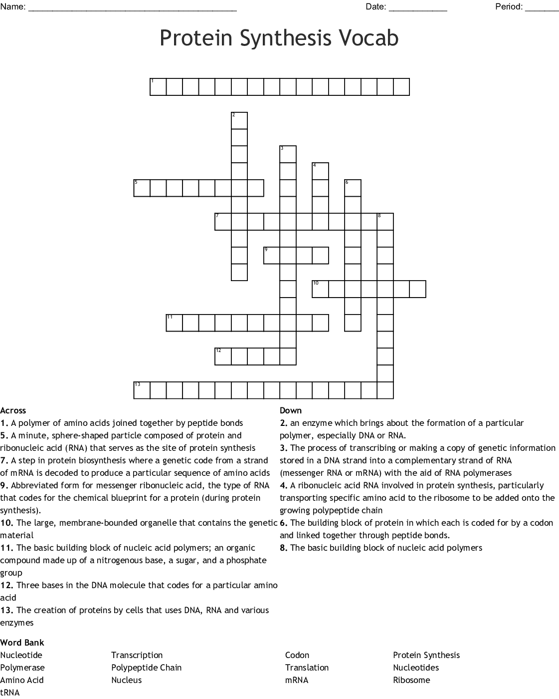Protein Synthesis Vocab Crossword