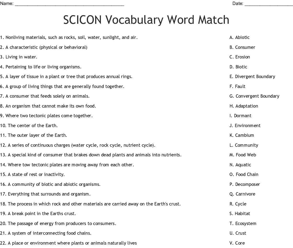Scicon Vocabulary Word Match Worksheet