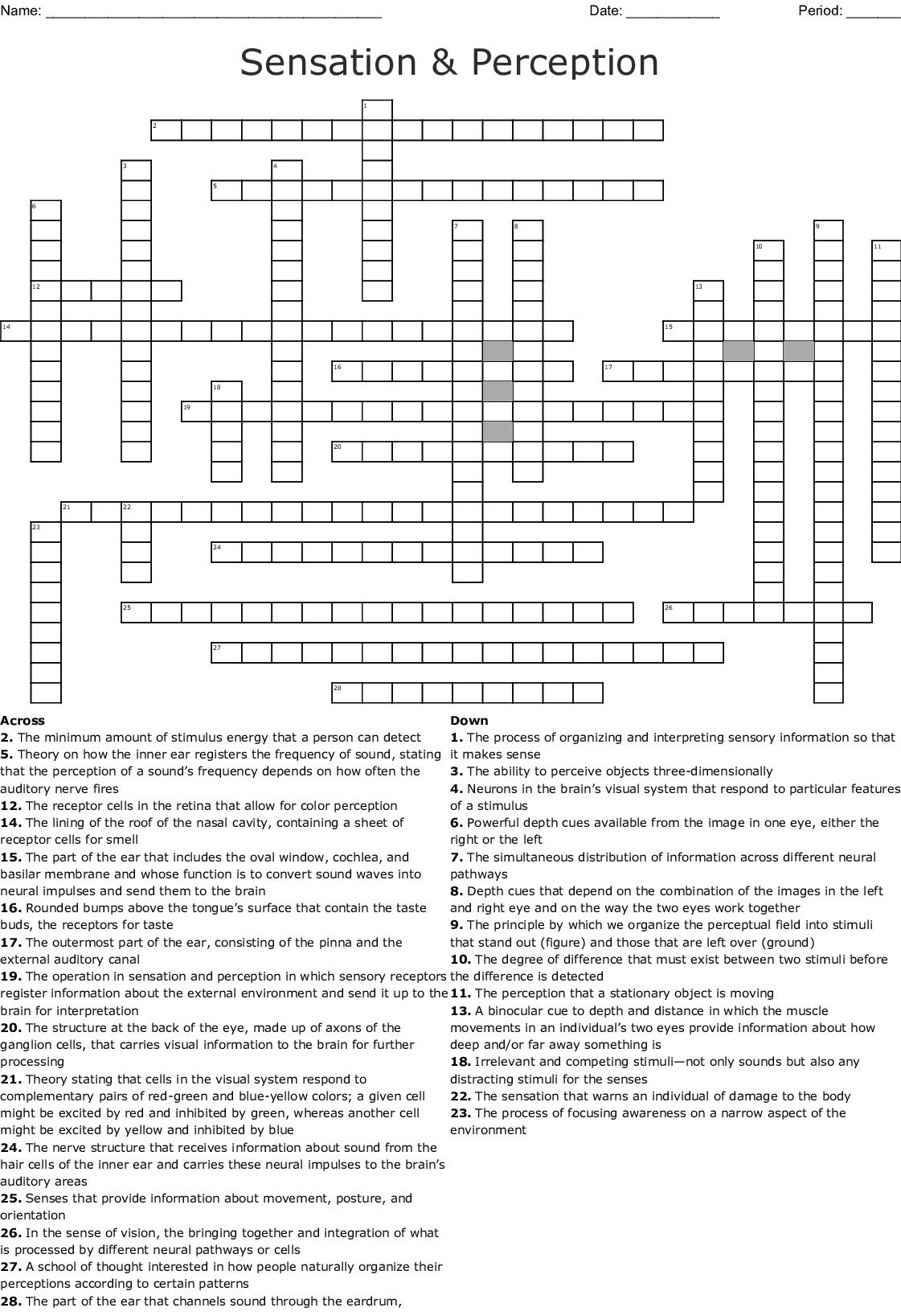 Sensation And Perception Crossword