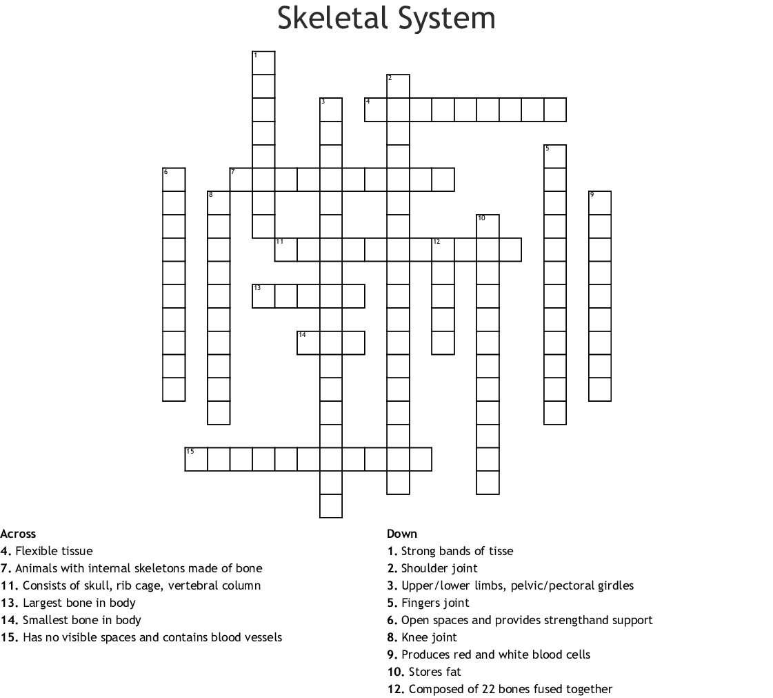 The Human Skeletal System Crossword