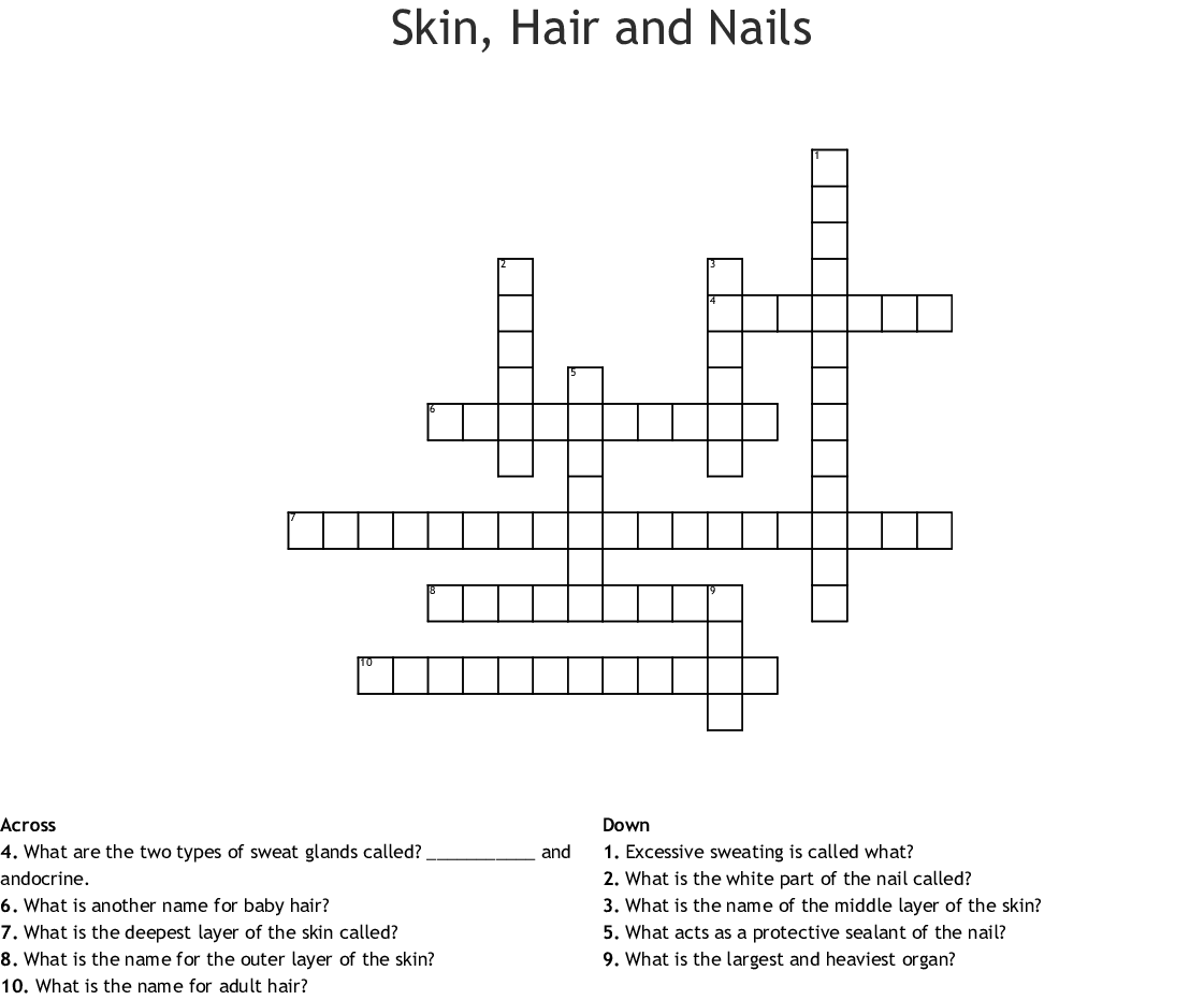 Skin Hair And Nails Crossword