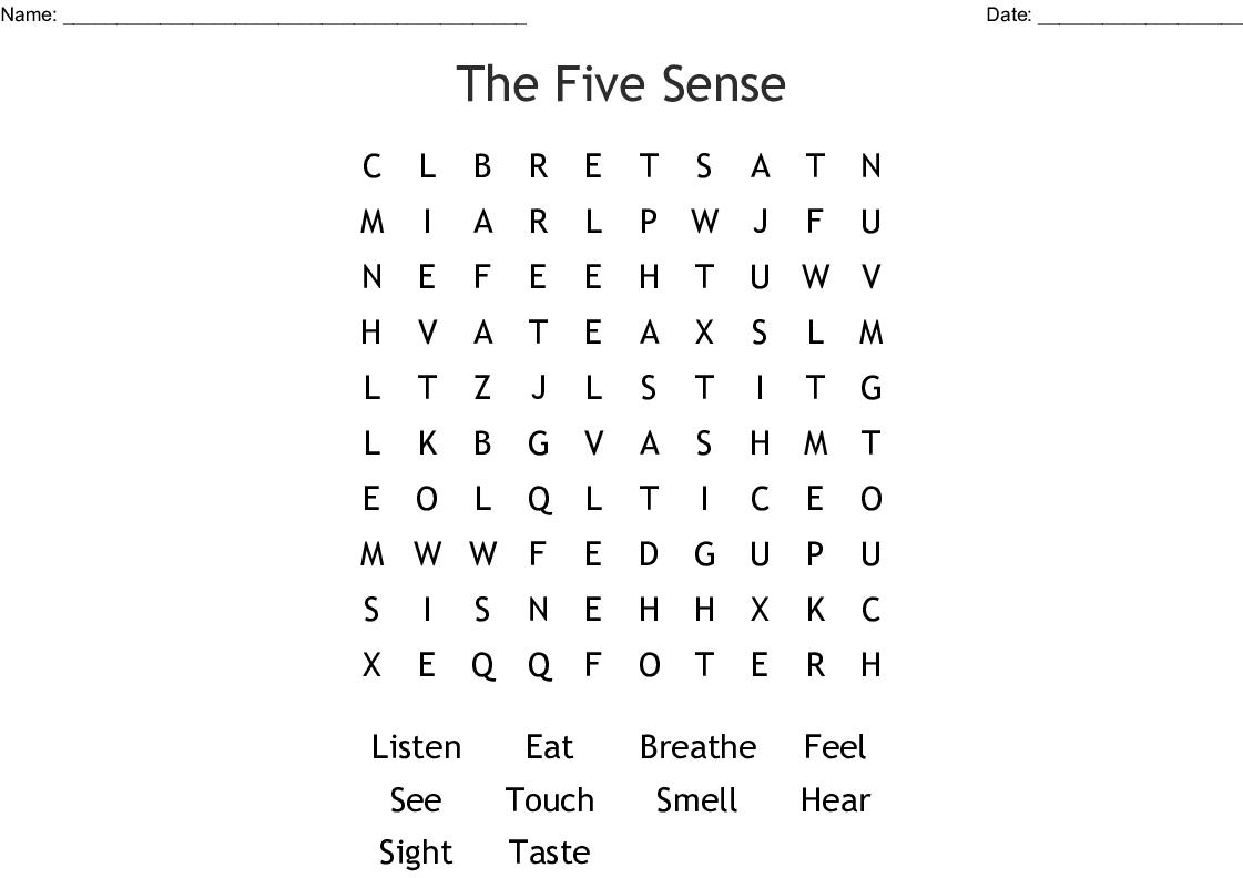 The Five Sense Word Search
