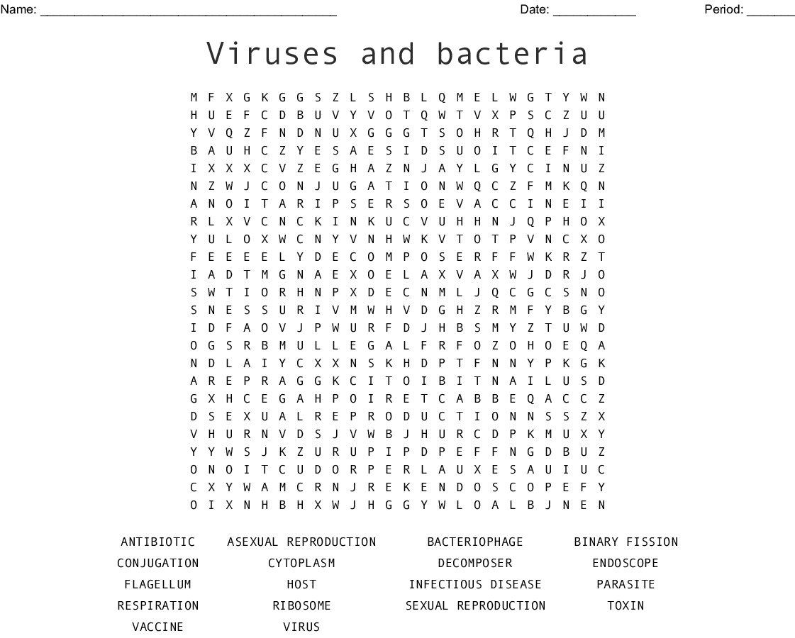 Virus And Bacteria Worksheet Answer Key