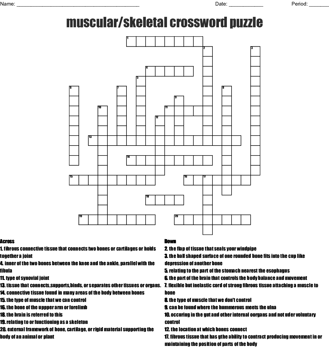 Muscular Skeletal Crossword Puzzle