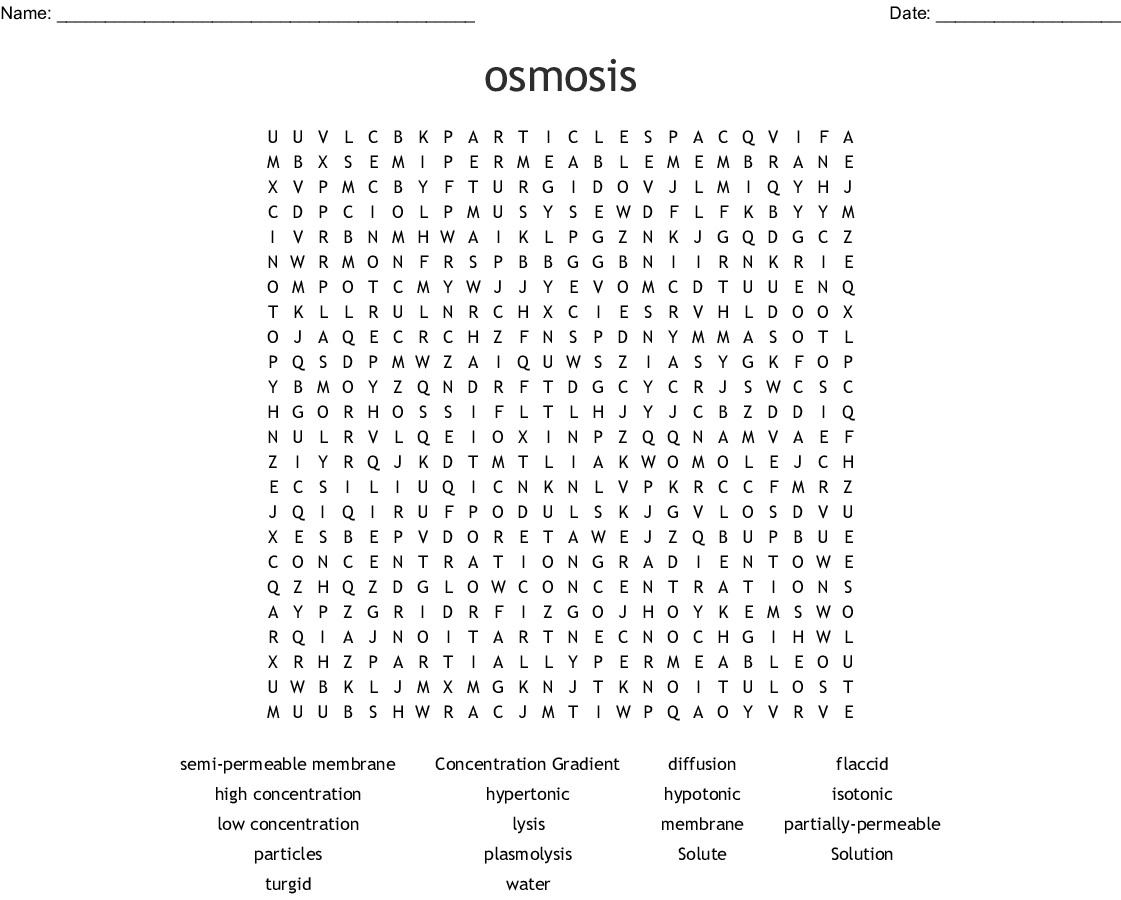Osmosis Word Search