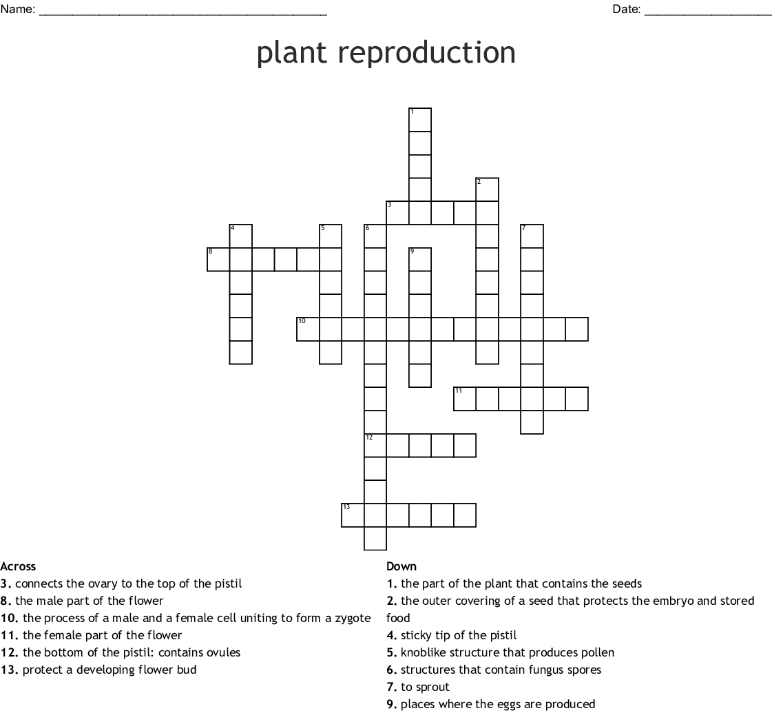 Parts Of Flower Pollination And Fertilization Worksheet
