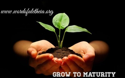 Grow to Maturity