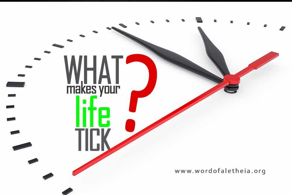 What Makes Your Life Tick?