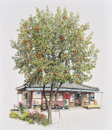 me-kyeoung-lee-south-korean-convenience-store-drawings-9
