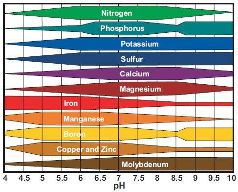 soil-ph-nutrient