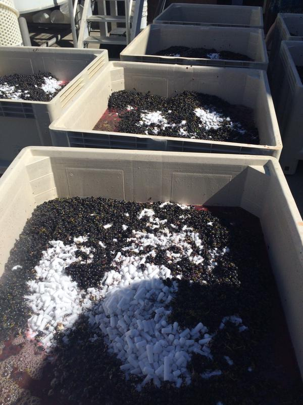 cold-soak-winemaking