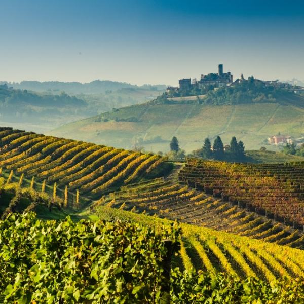 Piedmont-wine-pairing