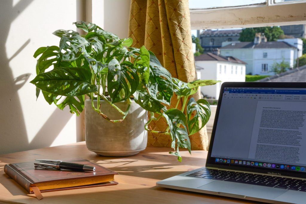A sunny workspace. Laptop and notebook on a desk beside a pot plant.