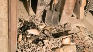 Incendie à l'Abbaye de la Dormition de Jérusalem