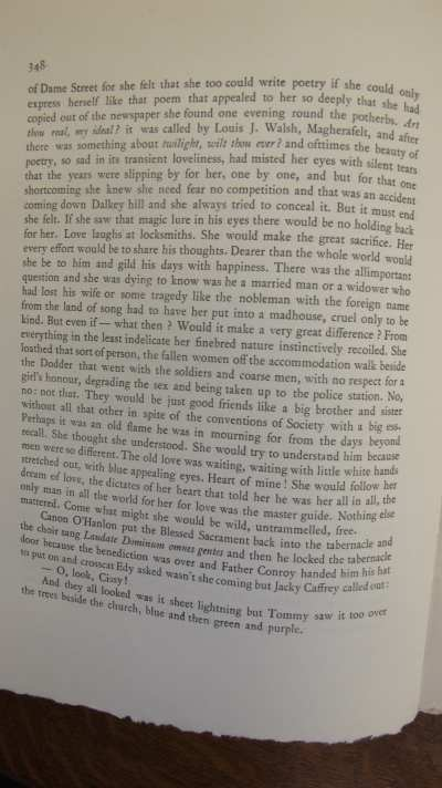 Ulysses pg 348