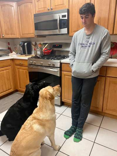 Nick D'Apolito gets ready to feed dinner to his English labs, Maggie Mae and Beatrice, on Oct. 1, 2020 in Newtown, PA. D'Apolito makes them sit while they wait impatiently for their food. (J24/D'Apolito)