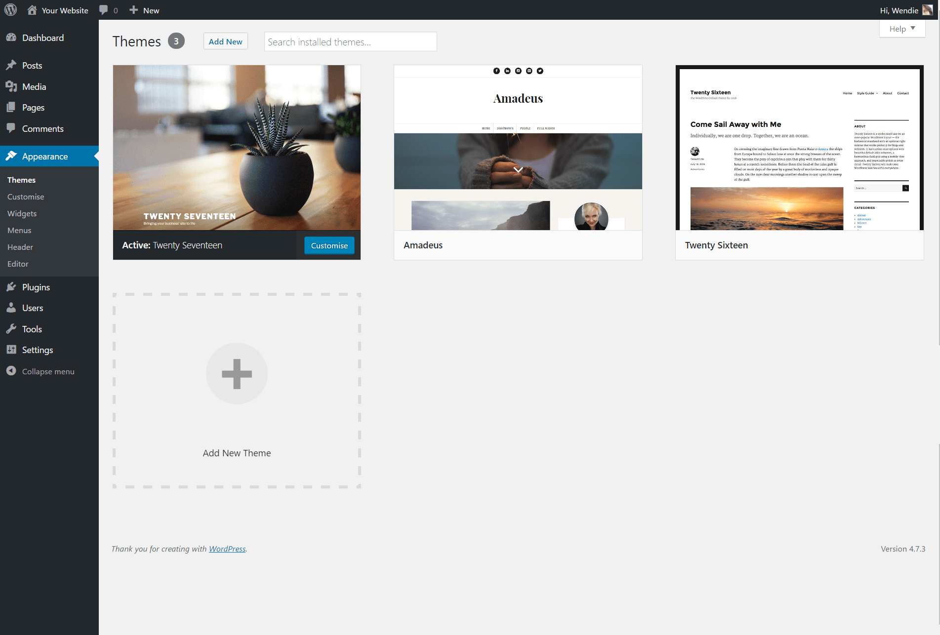 Manage Themes ‹ Your Website — WordPress