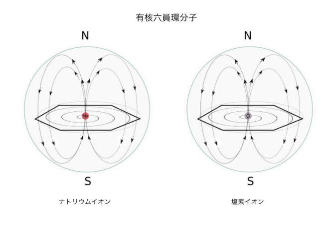 有核六員環分子